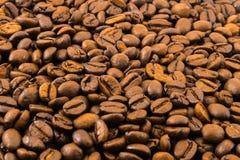 Fundo com muitos grãos de café marrons frescos Foto de Stock Royalty Free
