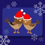Fundo com os dois pássaros bonitos em chapéus de Santa Fotografia de Stock Royalty Free
