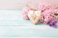 Fundo com os hyacynths, o açafrão e o decorativo das flores frescas Imagens de Stock Royalty Free