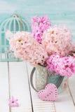 Fundo com os jacintos das flores frescas Fotos de Stock Royalty Free