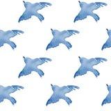 Fundo com os pássaros simples 2 da aquarela Imagem de Stock Royalty Free