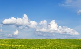 Fundo com os prados floridos verdes luxúrias, uma prisão militar Fotografia de Stock Royalty Free