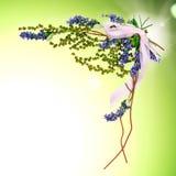 Fundo com os sprigs do azul e do verde Fotos de Stock Royalty Free