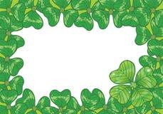 Fundo com os trevos para o dia do `s de St.Patrick Fotografia de Stock