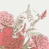 Fundo com pássaro e flor Imagem de Stock Royalty Free
