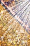 Fundo com paisagem bege do outono Vista diagonal Imagem de Stock Royalty Free