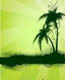 Fundo com palmeiras Imagem de Stock