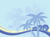 Fundo com palmeiras Fotografia de Stock Royalty Free