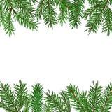 Fundo com ramo de árvore verde realístico do abeto Natal, símbolo do ano novo Fotos de Stock Royalty Free