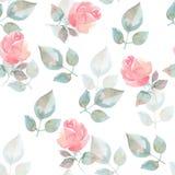 Fundo com rosas cor-de-rosa Teste padrão sem emenda Imagem de Stock