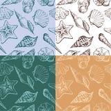Fundo com seashells ilustração royalty free