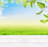 fundo com a tabela de madeira branca, a grama, as folhas verdes, o céu azul, a grama e o bokeh Fotografia de Stock Royalty Free