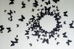 Fundo com uma beira do voo das borboletas Aperfeiçoe para a parte traseira Foto de Stock Royalty Free