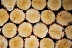 Fundo com uma textura de madeira da grão Fotos de Stock
