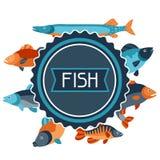 Fundo com vários peixes Imagem para anunciar brochuras, bandeiras, flayers, artigo e meios sociais Imagens de Stock Royalty Free