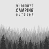 Fundo conífero selvagem da floresta do vetor outdoor ilustração do vetor