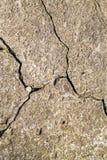 Fundo concreto do close up da textura do cimento rachado Tex velho da parede Imagem de Stock