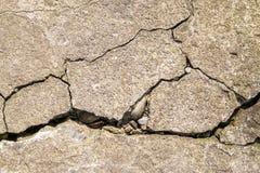 Fundo concreto do close up da textura do cimento rachado Tex velho da parede Foto de Stock
