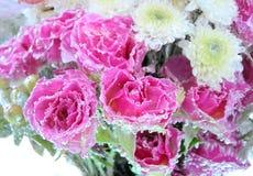 Fundo congelado das flores Fotografia de Stock