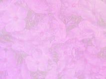 Fundo cor-de-rosa Fotos de Stock Royalty Free