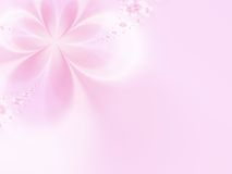 Fundo cor-de-rosa Fotografia de Stock Royalty Free