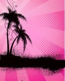 Fundo cor-de-rosa com palmeiras Fotografia de Stock Royalty Free
