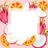Fundo cor-de-rosa com pitaya e laranja ilustração do vetor