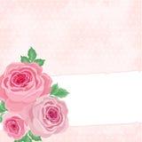 Fundo cor-de-rosa com rosas Imagem de Stock Royalty Free