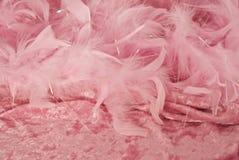 Fundo cor-de-rosa da pena e do veludo Imagem de Stock