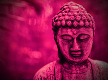 Fundo cor-de-rosa de Buddha Imagens de Stock Royalty Free