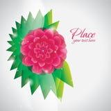 Fundo cor-de-rosa do sumário da flor Fotos de Stock