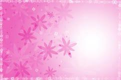 Fundo cor-de-rosa do sumário da flor. Fotos de Stock Royalty Free