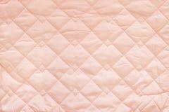 Fundo cor-de-rosa para o bebê Árvore congelada sozinha Fotos de Stock Royalty Free
