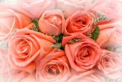 Fundo cor-de-rosa vermelho da flor para o dia de Valentim Copie o espaço fotos de stock royalty free