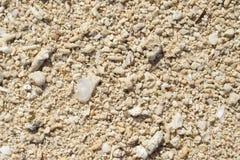 Fundo coral natural da praia Textura coral da areia no beira-mar sob o sol tropical Imagem de Stock