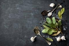 Fundo culinário escuro com folhas de louro, sal, pimenta e alho, vista de cima de, espaço da cópia para o texto da receita Imagens de Stock Royalty Free