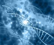 fundo 3D médico com costas do ADN Foto de Stock