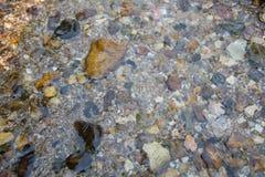 Fundo da água e da pedra Imagens de Stock