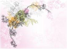 Fundo da árvore de cereja ilustração do vetor