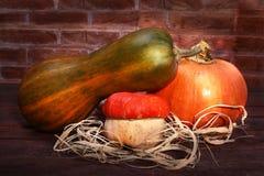 Fundo da ação de graças - abóboras sortidos da abóbora de outono em uma prateleira de madeira em um fundo do tijolo Imagens de Stock Royalty Free