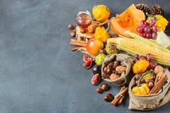 Fundo da ação de graças da colheita do outono da queda com milho da castanha da maçã da abóbora Imagem de Stock