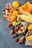 Fundo da ação de graças da colheita do outono da queda com milho da castanha da maçã da abóbora Fotos de Stock