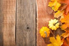Fundo da ação de graças com abóboras e folhas de bordo Fotografia de Stock