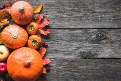 Fundo da ação de graças com abóboras, maçãs e as folhas caídas na tabela de madeira Fotografia de Stock