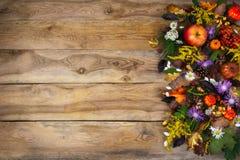 Fundo da ação de graças com fl das folhas de outono, o amarelo e o roxo Imagens de Stock Royalty Free