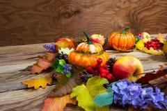Fundo da ação de graças com folhas, abóboras alaranjadas maduras, lilás Foto de Stock Royalty Free