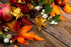 Fundo da ação de graças com folhas de bordo douradas, Rowan e whit Fotografia de Stock Royalty Free