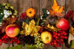 Fundo da ação de graças com folhas de bordo e as sementes douradas Fotografia de Stock Royalty Free