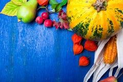 Fundo da ação de graças com frutos e cabaças do outono em uma tabela de madeira rústica azul Opinião superior da colheita do outo Foto de Stock Royalty Free