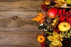 Fundo da ação de graças com maçãs, folhas de bordo douradas, Rowan Imagens de Stock Royalty Free
